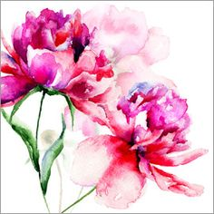 Schöne Pfingstrosen in Aquarell Some Great Wedding Flower Ideas Flowers play a sizeable position in Peony Painting, Watercolor Flowers, Watercolor Paintings, Tattoo Watercolor, Art Floral, Peony Flower, Flower Art, Flower Images, Pottery Barn Wall Art