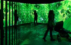 Moment Factory Turns Nature Installation Into Vibrant, Multi-Sensory Arena | The Creators Project