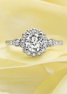 A dazzling halo of round diamonds encircles the center diamond to create a subtle floral effect. Glittering diamonds in pear shaped frames accent the shoulders of this gorgeous ring to make it truly distinctive.