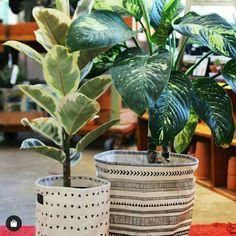 """Cotton canvas baskets"" Triangle Print, Triangle Pattern, Small Storage, Storage Baskets, Plant Basket, Black And White Canvas, Canvas Fabric, Cotton Canvas, Laundry Hamper"