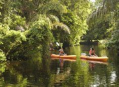 Tortuguero National Park, Costa Rica | Find your dream travel job: www.traveljobsearch.com/jobs