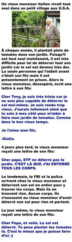 Funny Cute, Hilarious, Rage, Funny Memes, Jokes, French Quotes, Sad Stories, Life Lessons, I Laughed