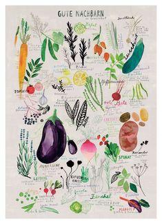 Gute Nachbarn by Rinah Lang as Poster in Standard Frame Plant Illustration, Cute Illustration, Food Drawing, Drawing S, Baby Print, Art Mural, Wall Art, Poster Prints, Art Prints