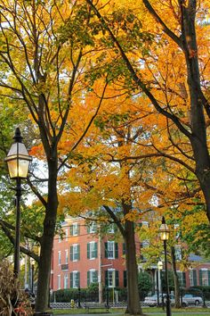 Salem, Massachusetts in the fall   New England Living
