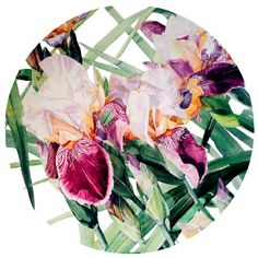 Iris Vivaldi Spring - Available in 4 different sizes, round ready to hang modern art from http://www.the-artwork-factory.com/circular-art/iris-vivaldi-spring-circular-art.html By The Artwork Factory®.