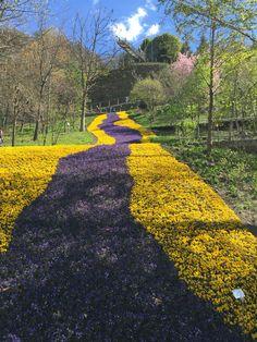 Gardens of Trauttmansdorff Castle , Merano, Italy  - April 5, 2015 - Copyright Stella Lifestyle