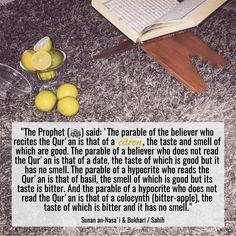 BE A CITRON :) #fruits #lemon #citron #Allah #quran #God #religion #norelgion #islam #muslim #hadith #believer #paradise #goals #lifegoals #happy #happiness #life #love