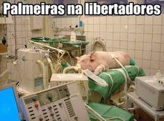 Brasileirão - Comunidade - Google+