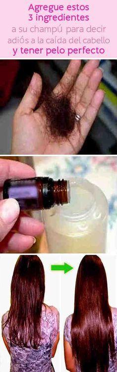 Agregue estos 3 ingredientes a su champú para decir adiós a la caída del cabello y tener pelo perfecto