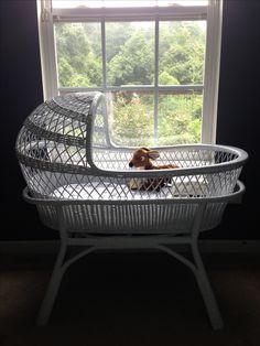 Antique white wicker baby bassinet