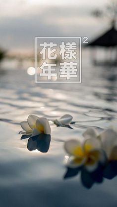 Most beautiful moments in life Flowery Wallpaper, Iphone Wallpaper, Seokjin, Namjoon, Taehyung, Shinee, Easy Landscape Paintings, Fandom Kpop, Bts Backgrounds