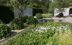 Chelsea Flower Show 2014 | Laurent Perrier garden designed by Luciano Giubbilei