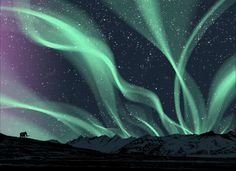 ♥ Northern lights - a must see
