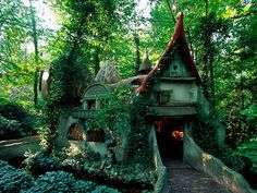 Forest House , Efteling , Holland - kind of want my future house modeled after this.