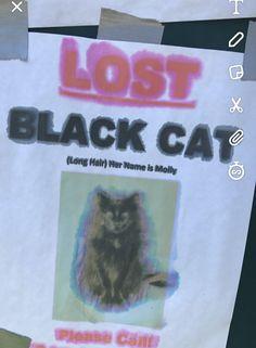 Someone lost their demon cat http://ift.tt/2wpE3CN