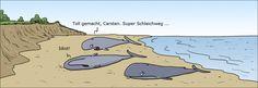Cartoon des Tages 29 Aug 2012