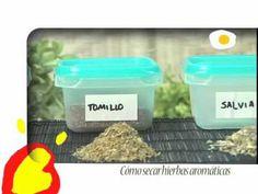 Nutrición: cómo secar hierbas aromáticas