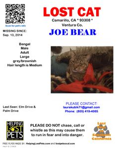 "LOST #Camarillo CA USA (Elm Dr/Palm Dr) Male #Bengal ""Joe Bear"". Brown tabby. Lost 9-13-14. Please share! To see this pet's location on the Helping Lost Pets Map: http://www.helpinglostpets.com/v2/?pid=278928 More Info: http://www.helpinglostpets.com/petdetail/?id=278928 #lost #cats #lostcat #venturacounty #socal #california"