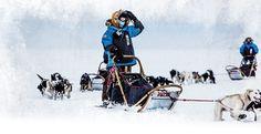 Fjällräven Polar 2014: about the contest