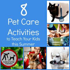 Critter Care (Bear Elective Adventure) ... 8 Pet Care Activities to Teach Your Kids