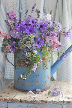 Watering can flower arrangement Beautiful Flower Arrangements, Fresh Flowers, Spring Flowers, Floral Arrangements, Beautiful Flowers, Tropical Flowers, Ikebana, Vibeke Design, Deco Floral