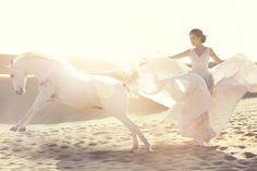 Wild horse couture