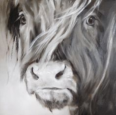 Stoere Schotse hooglander in grijze tinten. Verkocht. Scottish Highland Cow, Highland Cattle, Painting Studio, Sketch Painting, Charcole Drawings, Highland Cow Painting, Cute Cows, Cow Art, Animal Paintings