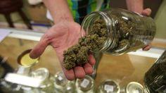 Roger Stone: Marijuana crackdown would be 'huge mistake'