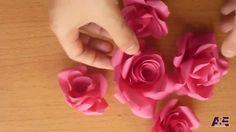 パンチを使わないバラ