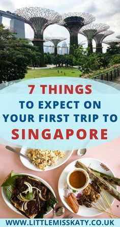This Singapore travel itinerary covers 4 days of the best food in Singapore, photography spots, things to do in Singapore where to stay. Includes hidden gems as well as the highlights! things to do in Singapore Singapore Guide, Singapore Travel Tips, Singapore Itinerary, Visit Singapore, Singapore Trip, Singapore Sights, Beautiful Places To Visit, Cool Places To Visit, Amazing Places