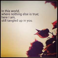 My favorite song ever- Staind, Tangled Up In You