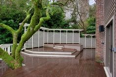 nice deck , love the moss covered tree
