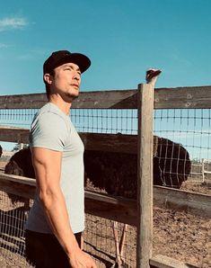 Daniel Henny, Asian Hotties, Criminal Minds, Asian Men, Sexy, Mens Tops, Instagram, Fence, Peeps