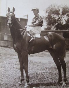 Peter Pan as a three-year-old with Jim Pike on board. Picture courtesy of Timothy Ritchie Melbourne Cup Winners, Thoroughbred Horse, Horse Horse, Sport Of Kings, Racehorse, Horse Racing, Beautiful Horses, Mans Best Friend, Peter Pan