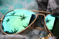 palmtree #sunglasses