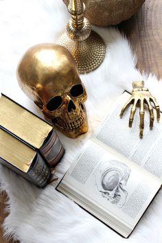 Anatomy books for Ha