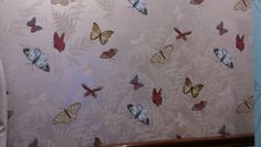 Nina Campbell butterflies