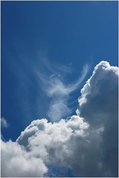 Bible verses about the Second Coming of Christ on BibleVersesAbout. This excellent photo of a Cloud Shape of a praying angel was captured by Sirsalis Photography. Calming Images, Angel Clouds, I Believe In Angels, Angel Pictures, Angels Among Us, Angels In Heaven, Heavenly Angels, Guardian Angels, Fallen Angels