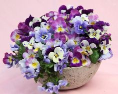 Pansies and violas are some of my favourite blooms and I adore how they are clustered together in this planter.