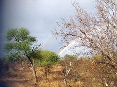 Dobbelt rainbow