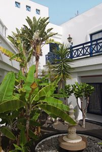 Marconfort Atlantic Gardens Bungalows is the paradise you was looking for in Lanzarote. Enjoy the sun all yea, lying poolside at these peaceful 3 keys bungalows surrounded by large gardens. www.marconfort.com