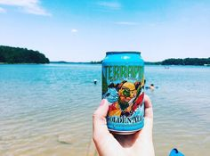"Whoever said ""life is better at the lake"" wasn't kidding (Especially when you #TakeTerrapin) : @leahpridgeon --- Don't forget to use the hashtag #TakeTerrapin to be featured on our Instagram and get free swag! We'll share a new photo each Tuesday! -- #drinkcraftbeer #GAbeer #lakelife #goldenale #exploregeorgia #lakehartwell"