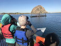 Family Guide to Exploring Morro Bay