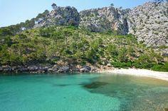 Cap de Formentor Photo: Cala Murta