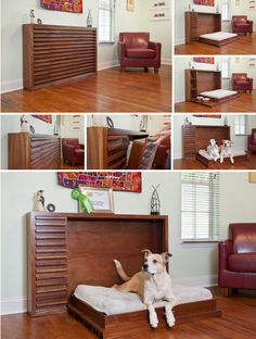 fold out bed for pets -