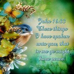 JOHN  16:33   .KJV