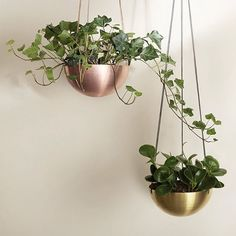 Solid Copper & Brass Hanging Planters