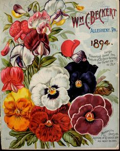 1894 - Wm. C. Beckert's catalogue of vegetable, flower and field seeds : - Biodiversity Heritage Library