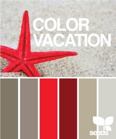 Living room or bedroom colors... maybe good for the half bath