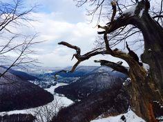 """View from """"Schwäbische Alb"""""""